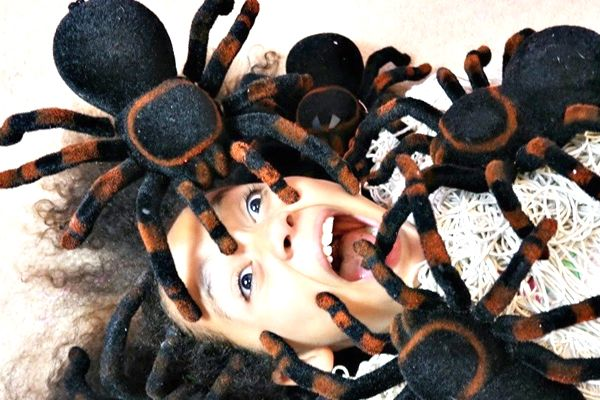 significado de soñar con arañas en la cabeza