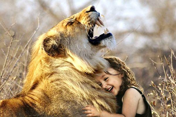 soñar que un leon te defiende o protege