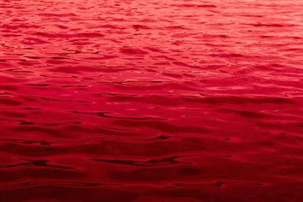 sueños con un rio de sangre