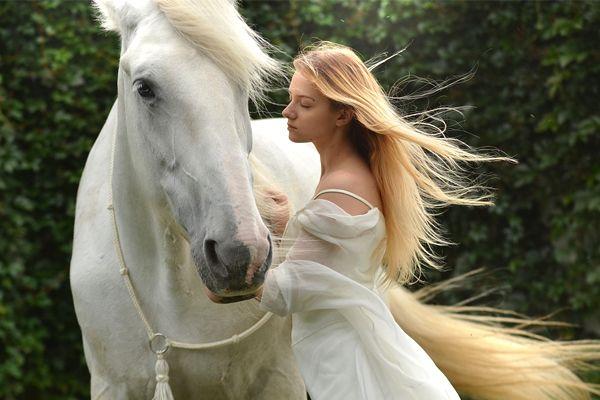 soñar con caballos de color blanco