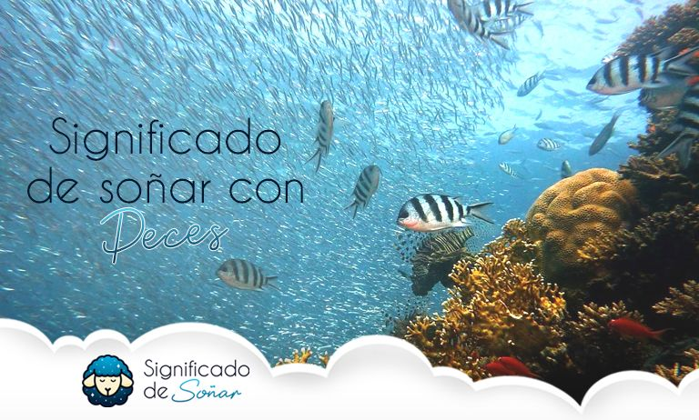 significado de soñar con peces