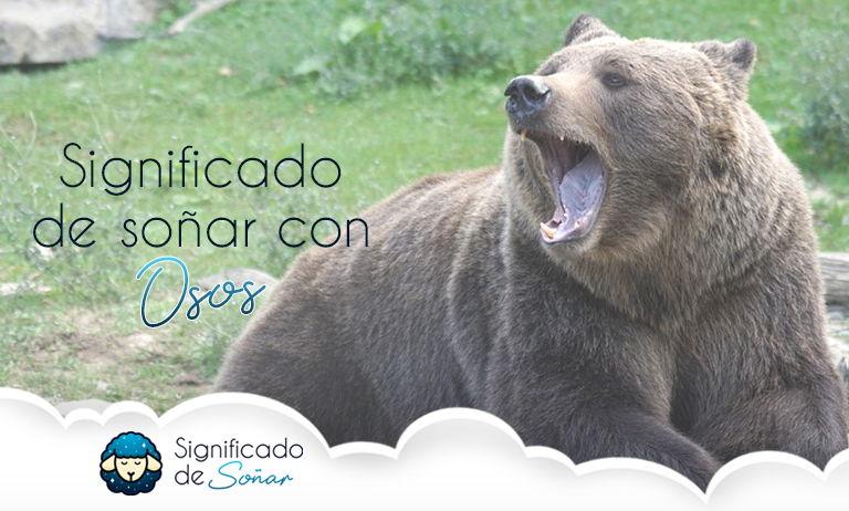 soñar con osos significado