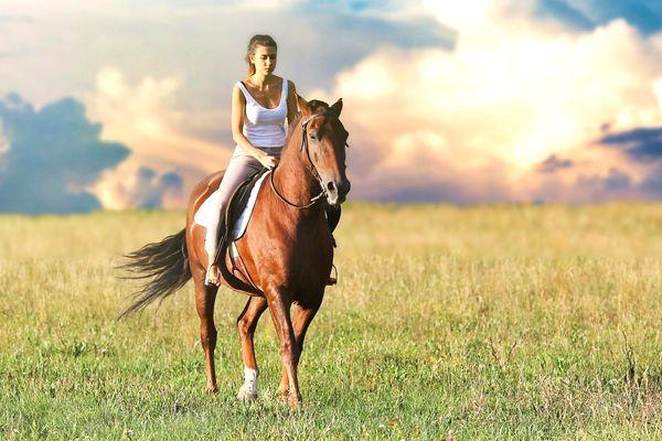 soñar con viajar a caballo