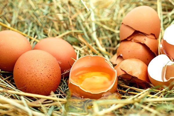 soñar con muchos huevos